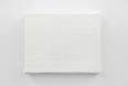 美術作品が成立するために必要なシステム(素材や技法、資金、制度など)に注目し、その構造自体に疑問を投げかけるようなプロジェクトを発表。本展では、カンヴァスの形状をしているが、実際には白い油絵具の塊だけで作られた《ブランク》により、支持体無しには存在し得ない絵画の本質と、ミニマルな表現の意味を追求する。